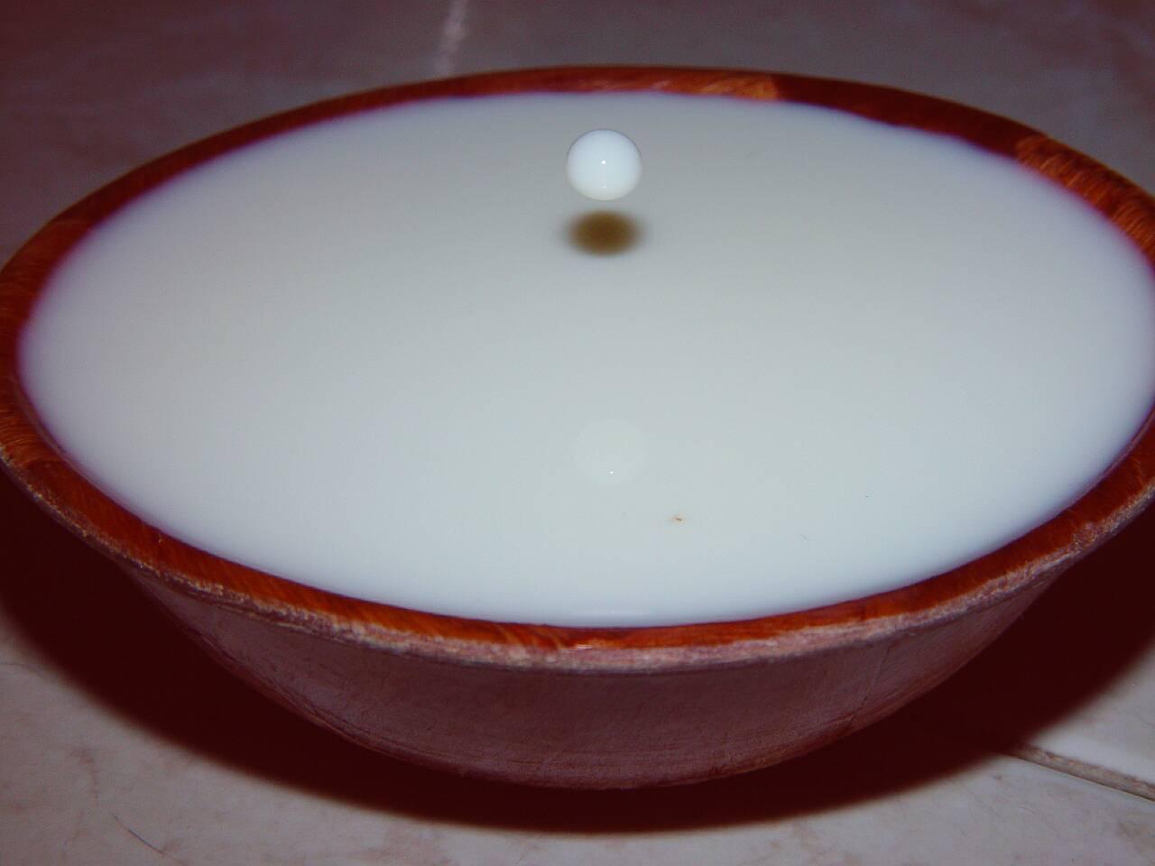 Dror Bar-Natan's Image Gallery: Miscellaneous: Milk Drops ...